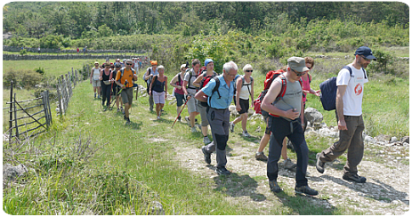 Our services - hiking groups